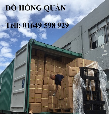 Chuyên cung cấp các loại găng tay PVC phòng sạch